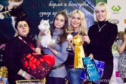 Краснодар, ноябрь, 2012