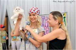 Выставка кошек в Анапе, 20-21 июля, 2013